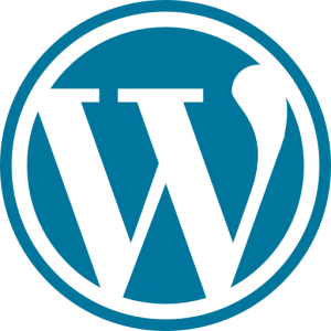 wordpress 3 300x300 - wordpress (3)